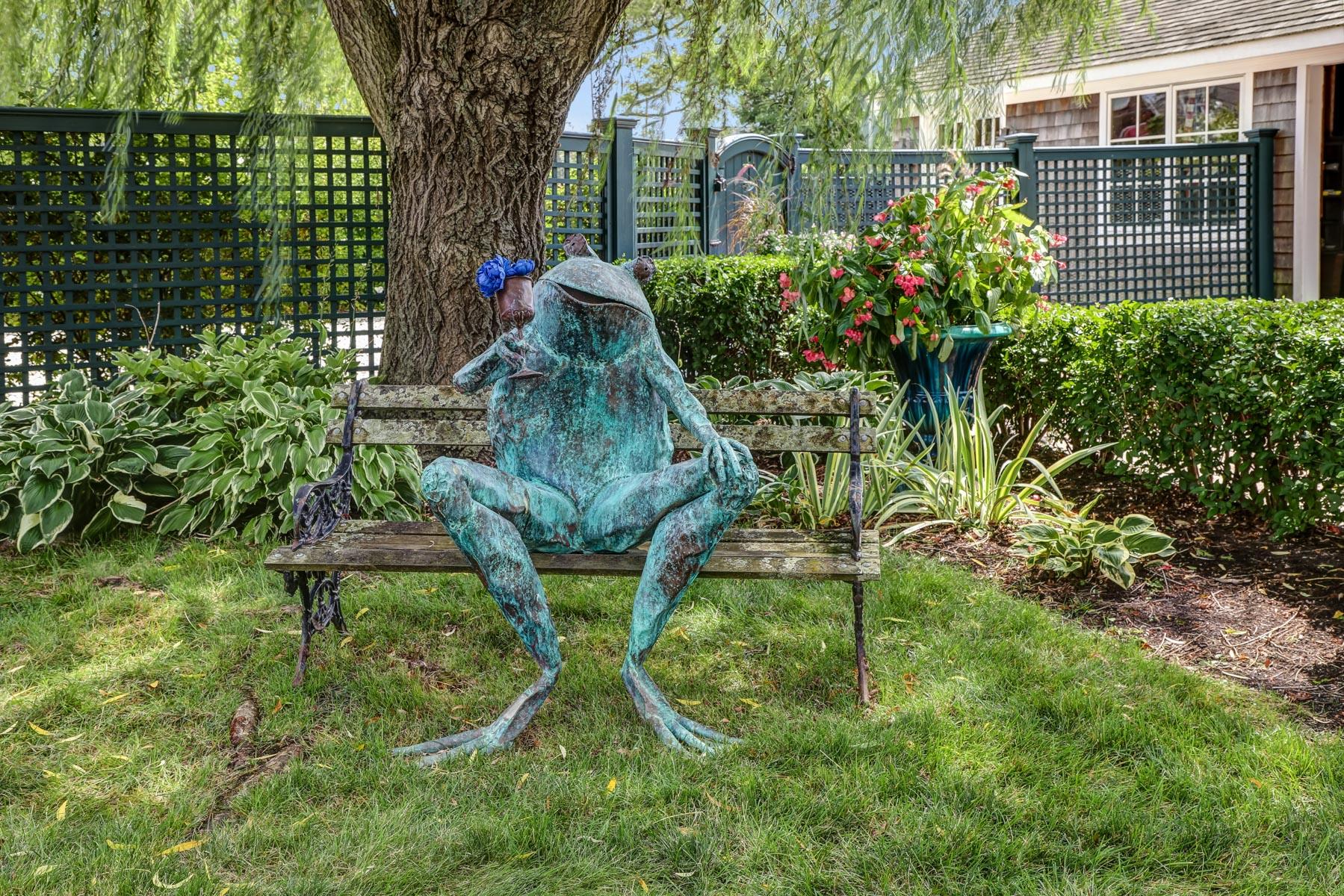 31.d. Frog- VMD (21 of 23) copy
